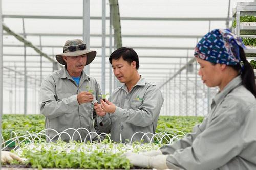 Vingroup ký thỏa thuận hợp tác với 250 hợp tác xã và hộ sản xuất - 1