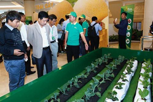 Vingroup ký thỏa thuận hợp tác với 250 hợp tác xã và hộ sản xuất - 2