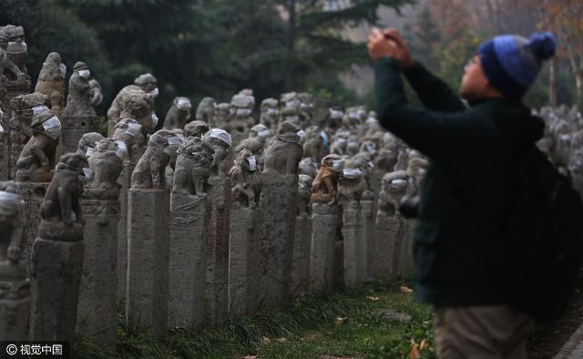 800 sư tử đá TQ đeo khẩu trang...chống bụi - 3