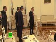 Thế giới - Putin trổ tài dỗ chó dữ khi gặp phái đoàn Nhật Bản