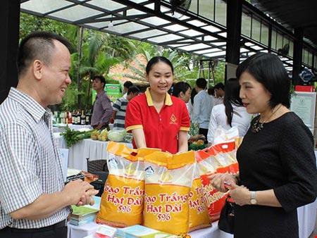 Vì sao gạo Việt bị 'đo ván' cả sân nhà lẫn sân khách? - 2