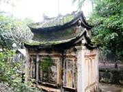 Tin tức trong ngày - Phát hiện ngôi mộ cổ độc đáo trong vườn nhà dân