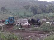 3 bảo vệ rừng bị bắn chết: Bắt PGĐ công ty Long Sơn