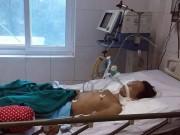 Dịch cúm gia cầm có thể bùng phát vào cuối năm