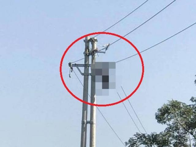 Người đàn ông bị điện giật cháy khô trên cột điện cao thế
