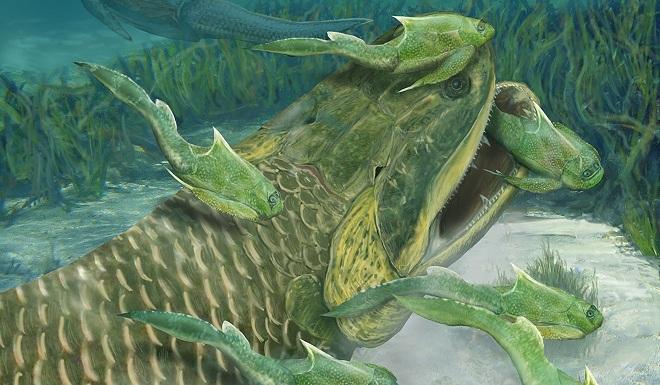 """""""Thủy quái"""" ăn thịt cá mập có thể là tổ tiên của con người - 1"""