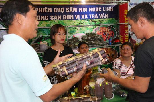 Sâm Ngọc Linh gần 100 triệu/kg vẫn đắt như tôm tươi - 3