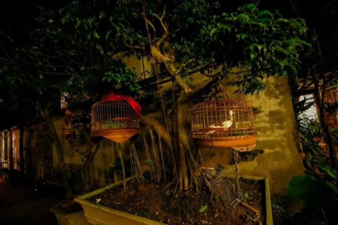 Bộ sưu tập đồ cổ trong phủ thờ Tổ rộng 1.000m2 của diễn viên hài Vượng râu - 14