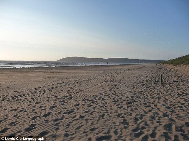 """Thấy chó ngửi vật lạ trên bãi biển, lại gần bị """"sốc toàn tập"""" - 1"""