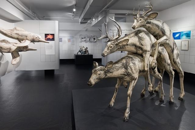 """Ngượng """"chín mặt"""" khám phá những bảo tàng tình dục nổi tiếng thế giới - 5"""