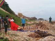 """Cận cảnh bộ xương """"khủng"""" của cá ông hơn 10 tấn lạc trôi ở Kiên Giang"""
