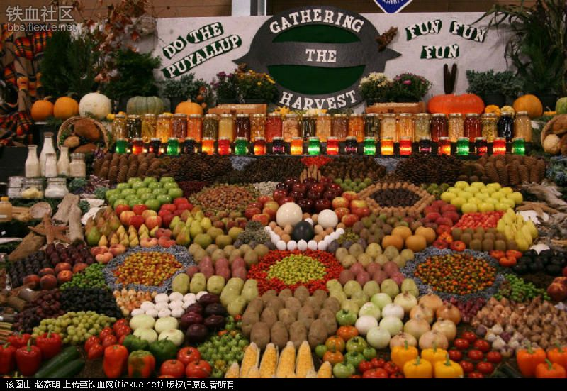 Ai cũng muốn đi tới chợ rau củ này vì nó đẹp như tranh nghệ thuật - 8