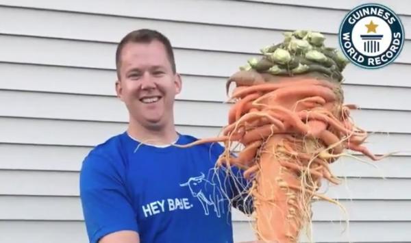 """Nông dân Mỹ trồng được cà rốt to nhất thế giới nhờ """"chút may mắn"""" - 1"""