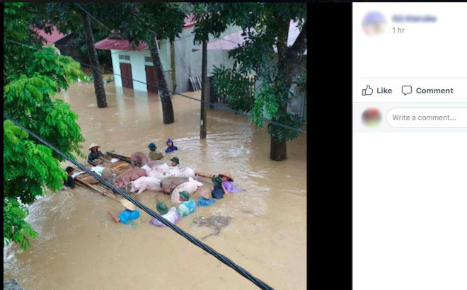 """Dân mạng chia sẻ """"rần rần"""" ảnh mưa lũ kinh hoàng làm hàng chục người chết - 2"""
