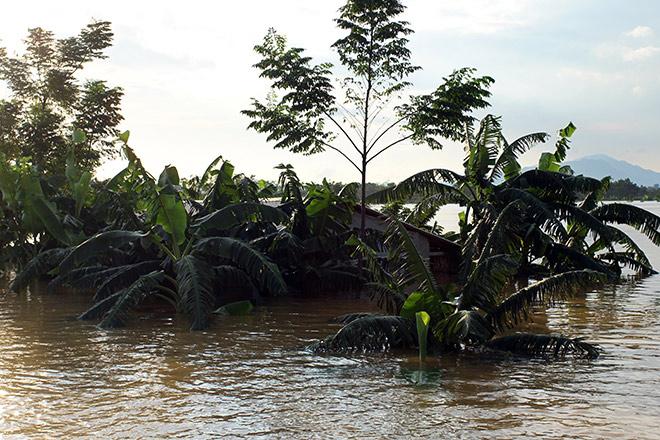 Cận cảnh vỡ đê ở Chương Mỹ, nhiều khu vực chìm trong biển nước - 20