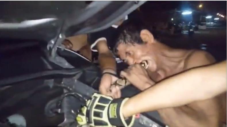 """Video: Bắt trăn """"khủng"""" bằng cách cắn vào đuôi ở Thái Lan - 1"""