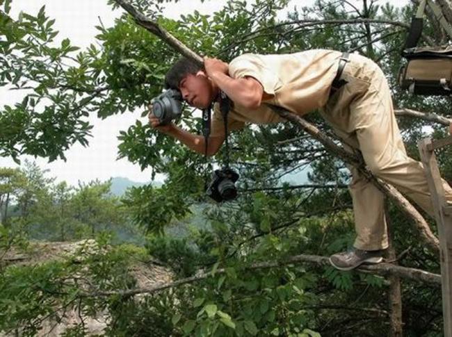 Muốn làm nhiếp ảnh gia là phải biết leo cây.