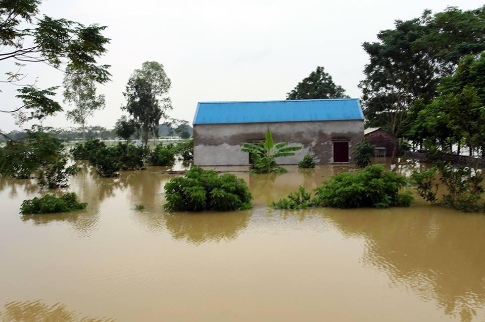 Chương Mỹ - Hà Nội: Làng mạc biến thành sông, dân vật lộn trong biển nước - 1