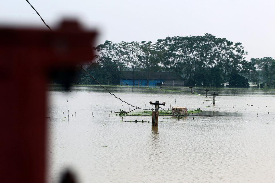 Chương Mỹ - Hà Nội: Làng mạc biến thành sông, dân vật lộn trong biển nước - 14