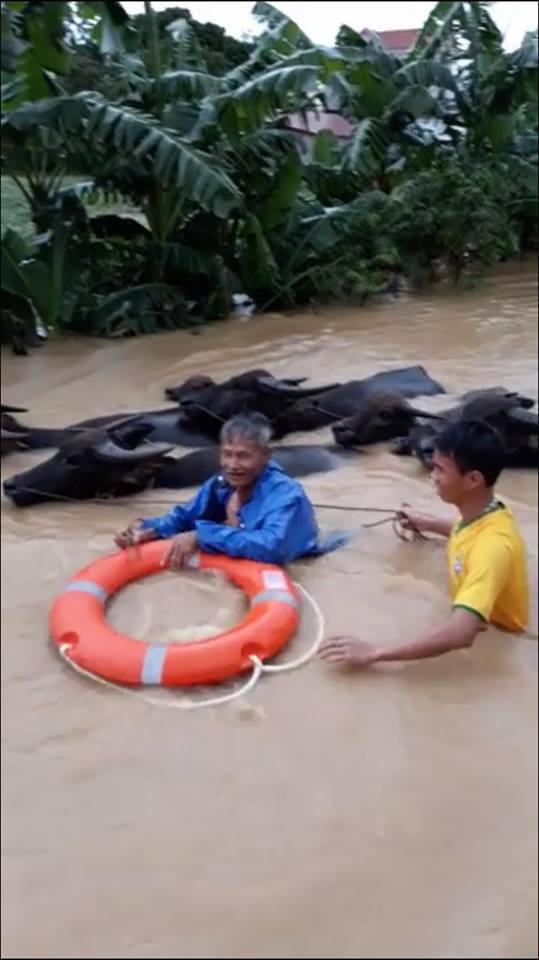 Xót xa nhìn cảnh người dân chống chọi lũ lụt, sống chơi vơi trên nóc nhà - 7