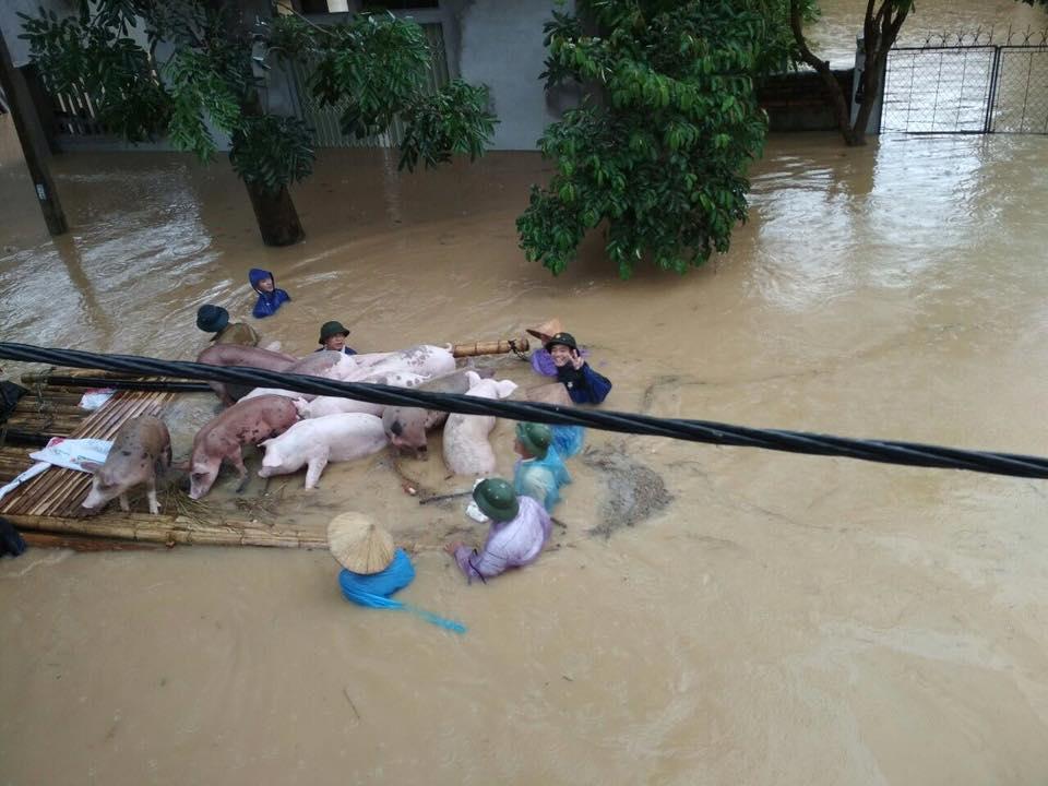 Xót xa nhìn cảnh người dân chống chọi lũ lụt, sống chơi vơi trên nóc nhà - 8