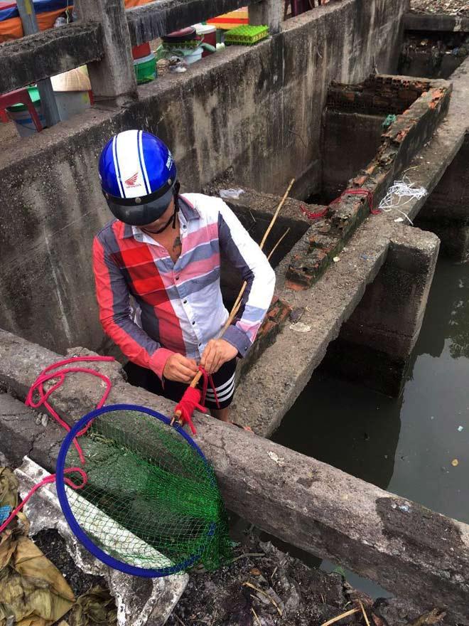 """Người lớn, trẻ nhỏ đua nhau vợt cá trên kênh """"chết"""" ở Sài Gòn - 2"""