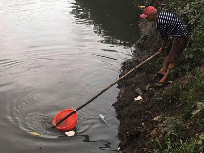 """Người lớn, trẻ nhỏ đua nhau vợt cá trên kênh """"chết"""" ở Sài Gòn - 3"""