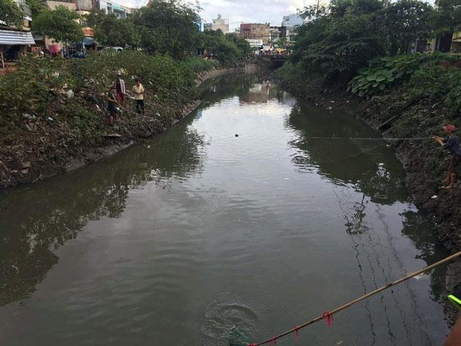 """Người lớn, trẻ nhỏ đua nhau vợt cá trên kênh """"chết"""" ở Sài Gòn - 4"""