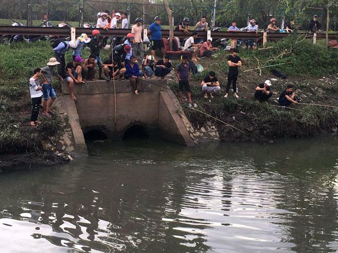 """Người lớn, trẻ nhỏ đua nhau vợt cá trên kênh """"chết"""" ở Sài Gòn - 11"""