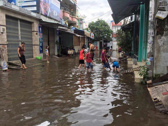 """Người lớn, trẻ nhỏ đua nhau vợt cá trên kênh """"chết"""" ở Sài Gòn - 14"""