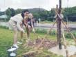 Dàn thí sinh Miss Grand International 2017 đi trồng cây tại Phú Quốc