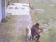 Đang ngồi trên vỉa hè, bị chó áp sát ghếch chân tè một bãi