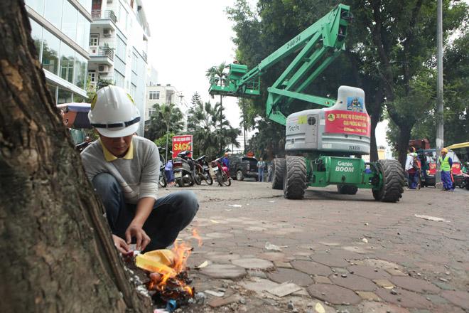 """HN: """"Chia tay"""" gần 1.300 cây xanh đường Phạm Văn Đồng - 1"""