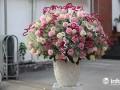 """TP.HCM: Khách """"sộp"""" chi 55 triệu đồng mua hoa nhập ngoại dịp 20/10"""