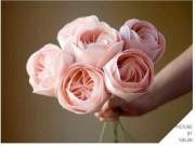"""Thị trường - Tiêu dùng - Những bông hoa đắt nhất TG - món quà """"trong mơ"""" của chị em ngày 20-10"""