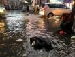 Triều cường vượt báo động 3, quận trung tâm Sài Gòn ngập như sông
