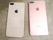 """Tưởng iPhone 8/ 8 Plus dễ vỡ, không ngờ """"nồi đồng cối đá"""" thế này!"""