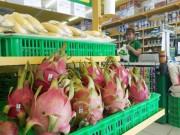 Tài chính - Bất động sản - Hoàng Anh Gia Lai kiếm ngàn tỉ nhờ bán trái cây