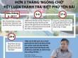 """Infographic: Toàn cảnh vụ """"biệt phủ"""" Yên Bái"""