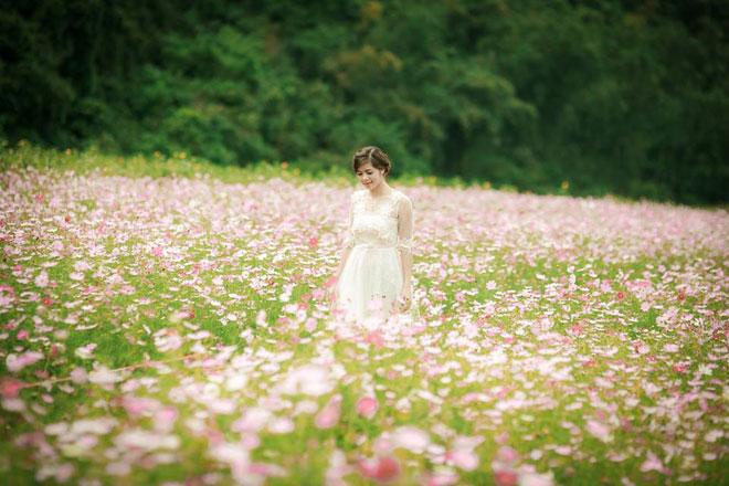 """""""Lịm tim"""" giữa thung lũng hoa Bắc Sơn bồng bềnh ở xứ Lạng - 2"""