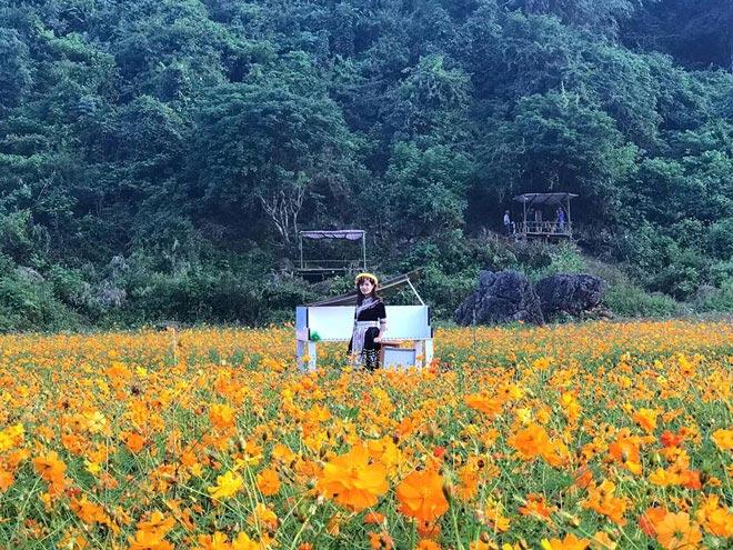 """""""Lịm tim"""" giữa thung lũng hoa Bắc Sơn bồng bềnh ở xứ Lạng - 5"""
