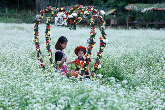 """""""Lịm tim"""" giữa thung lũng hoa Bắc Sơn bồng bềnh ở xứ Lạng - 10"""
