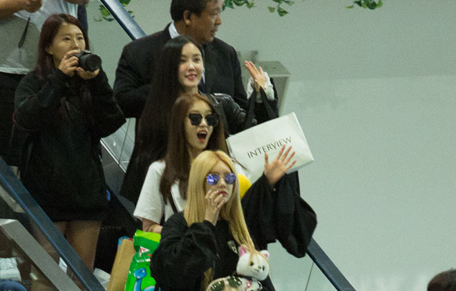 Fan Việt hoá trang, giăng băng rôn cầu hôn T-ara tại sân bay - 5
