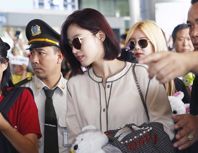 Fan Việt hoá trang, giăng băng rôn cầu hôn T-ara tại sân bay - 6