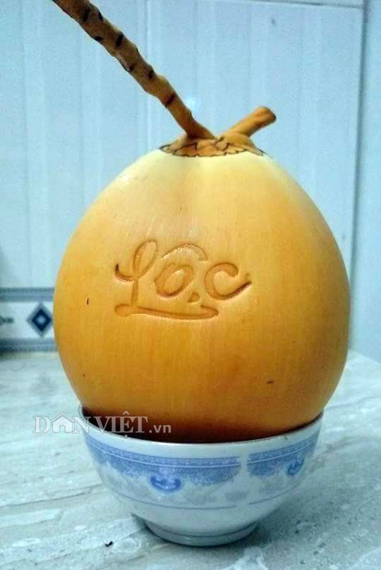 """5.000 trái dừa """"độc"""", lạ có """"1-0-2"""" sẽ được bán trong dịp Tết 2018 - 1"""