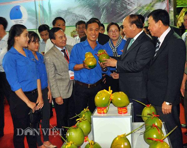 """5.000 trái dừa """"độc"""", lạ có """"1-0-2"""" sẽ được bán trong dịp Tết 2018 - 3"""