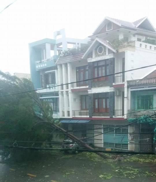 Tàn phá Nam Trung Bộ, bão tiếp tục gây thiệt hại ở Tây Nguyên - 12