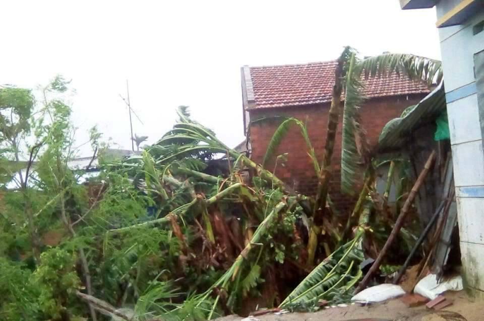 Chùm ảnh sức tàn phá khủng khiếp của bão số 12 - 11