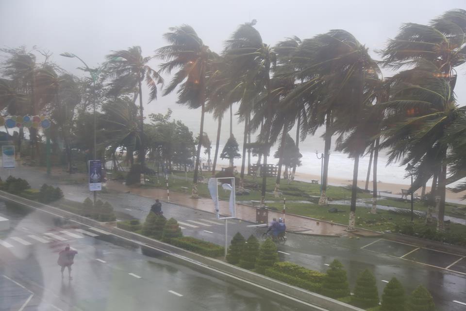 Tàn phá Nam Trung Bộ, bão tiếp tục gây thiệt hại ở Tây Nguyên - 6