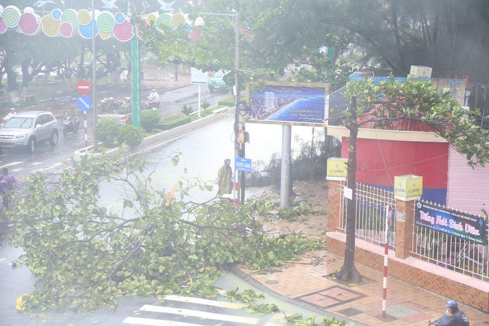 Chùm ảnh sức tàn phá khủng khiếp của bão số 12 - 2